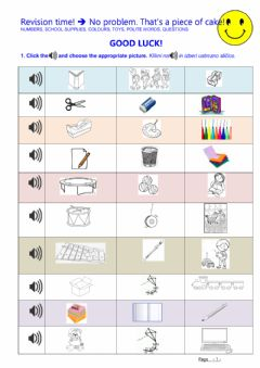 Interactive worksheet Revision time!