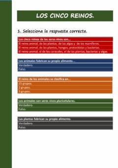 Interactive worksheet Los reinos