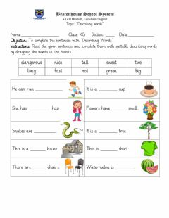 Interactive worksheet Describing Words