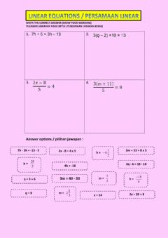 Interactive worksheet Linear solving 1
