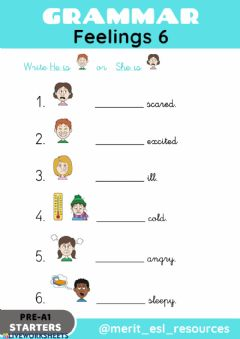 Interactive worksheet Feelings - Write He is or She is