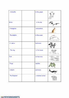 Interactive worksheet Present simple