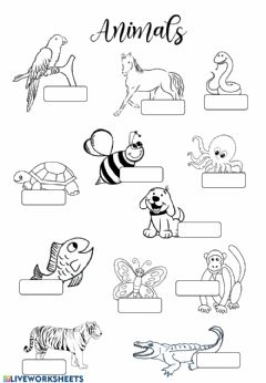 Interactive worksheet Animals