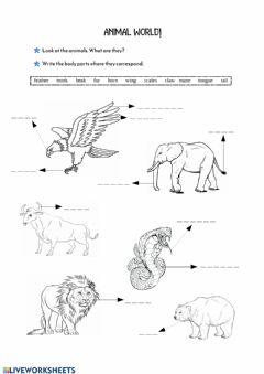 Ficha interactiva Animals' Body Parts