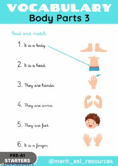 Interactive worksheet Body Parts - Read and match