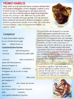 Interactive worksheet Homo Habilis 1