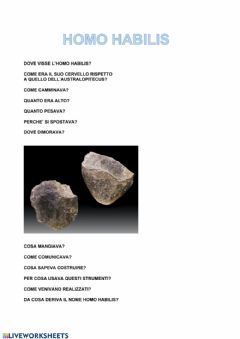 Interactive worksheet Homo Habilis