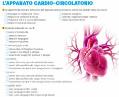 Interactive worksheet L'apparato cardio-circolatorio 1
