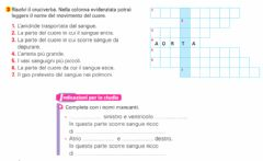 Interactive worksheet L'apparato cardio-circolatorio2