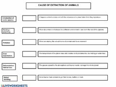 Interactive worksheet Cause of extinction of animals