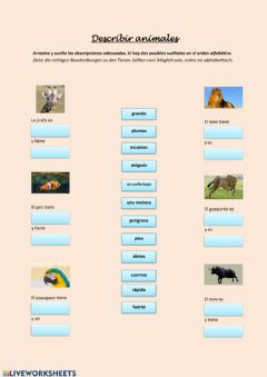 Interactive worksheet Decribir animales