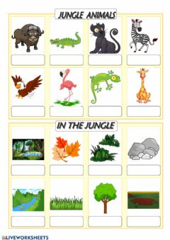 Interactive worksheet Jungle vocabulary