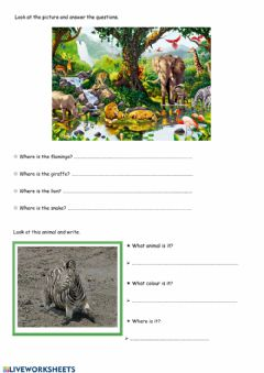 Interactive worksheet Jungle animals