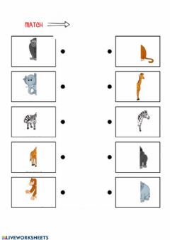 Interactive worksheet Animals: parts of the body