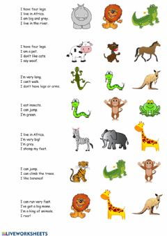 Interactive worksheet Animal riddles