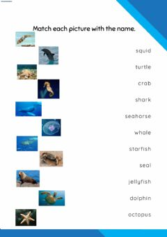 Interactive worksheet Sea animals and comparatives
