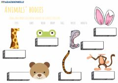 Interactive worksheet Animals' bodies