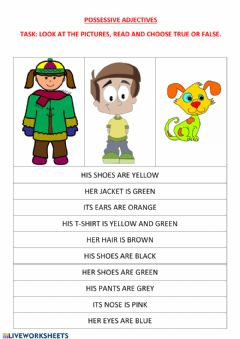 Interactive worksheet The possessive adjectives