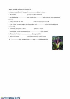 Interactive worksheet SIMPLE PRESENT or PRESENT CONTINOUS