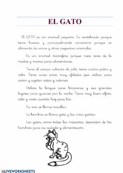 Interactive worksheet Animales:el gato