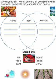Interactive worksheet Needs of Plants and Animals