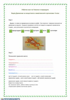 Interactive worksheet Кръвоносна система