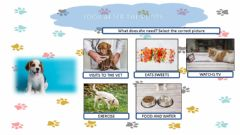 Interactive worksheet Look after pets