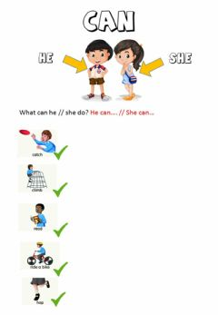 Interactive worksheet Can - affirmative form