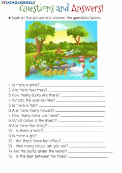 Interactive worksheet Questions and Answers