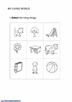 Ficha interactiva Living things and plants