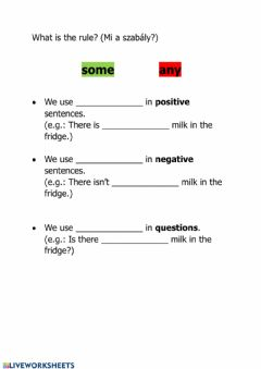 Interactive worksheet Some - any - rules