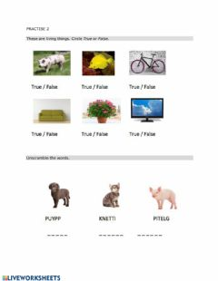 Interactive worksheet Review- Living and non-living things
