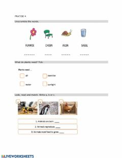 Interactive worksheet Review: Living and non-living things