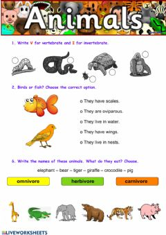 Interactive worksheet Animals review