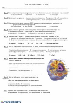 Interactive worksheet Биология 10 клас