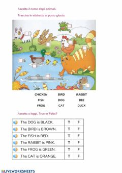 Interactive worksheet Animals & colours
