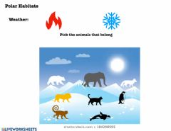 Interactive worksheet Polar Habitats Animals