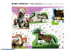 Interactive worksheet Baby animals vocabulary