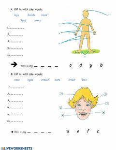 Interactive worksheet Body and Face