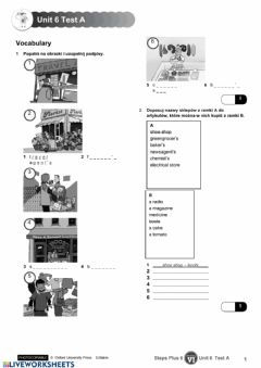 Interactive worksheet Steps Plus Test