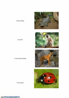 Interactive worksheet Can-Can-t (animals)