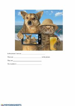 Interactive worksheet Picture description - opis obrazka