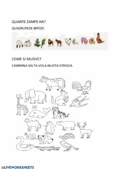 Interactive worksheet Come si muove?