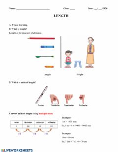 Interactive worksheet Length