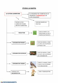 Interactive worksheet La catena alimentare