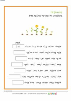 Interactive worksheet Shorashim