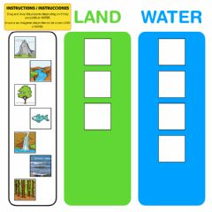 Ficha interactiva Land or water - Drag and drop activity