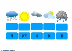 Interactive worksheet 天气