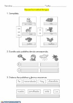 Interactive worksheet Repaso trimestral