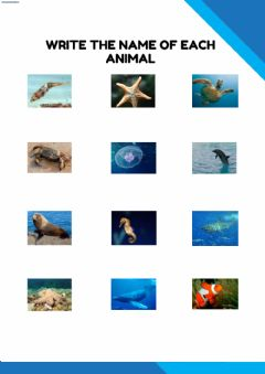Interactive worksheet Sea animals and comparatives 2